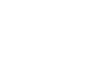 ico-drone